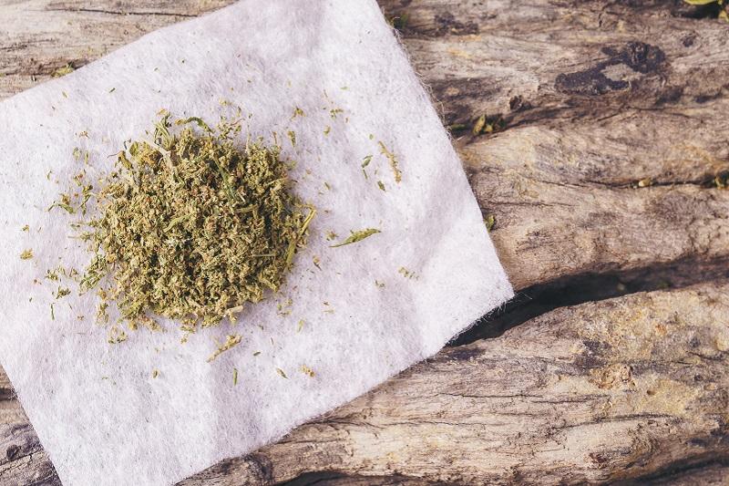 Gdzie kupić nasiona marihuany?